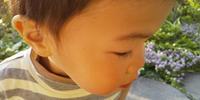 息子との週末に感謝 - 成長する家 子育て物語