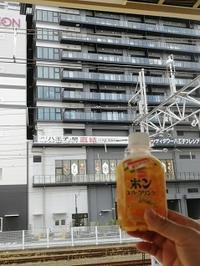 令和最初の飲み旅-信州松本 - 続マシュービ日記