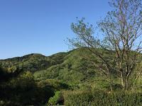 【topics】 里山のオオクワを求めて散策  伐採されたポイントは  …     予告編 - Kuwashinブログ