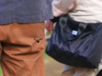 花よりクマバチ(4)・・・大混雑の足利フラワーパークで縄張りを守るクマちゃん!♪ - 『私のデジタル写真眼』