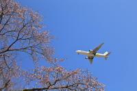 3色のパレット~旭川空港~ - 自由な空と雲と気まぐれと ~from 旭川空港~