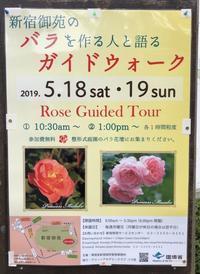 新宿御苑のバラを作る人と語るガイドウォーク - みるはな写真くらぶ