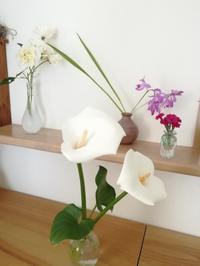 お花と新緑 - slow着物のブログ
