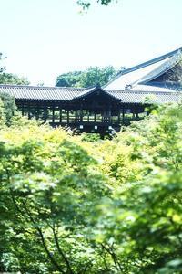 初夏の東福寺 - カメラとさんぽ
