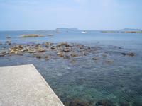 日曜日は熊本県天草市牛深へクロ釣りに行く - ステンドグラスルーチェの日常