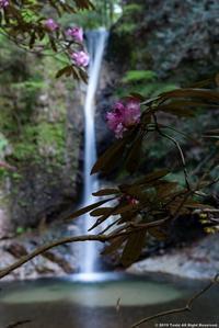 投石の滝 - toshi の ならはまほろば