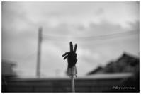 ピース - BobのCamera