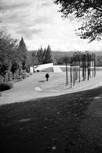 残像の記憶、クレマチスの丘 - K.Sat写真の目線