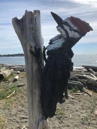 Esquimalt Lagoon - ビクトリア日記