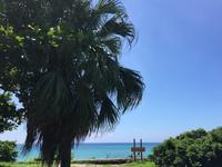 台湾佳楽水 今日の波 ヒザ〜モモサイズ 晴れオフショア - 台湾サーフィン 佳楽水は今日もいい波    佳楽水好浪!