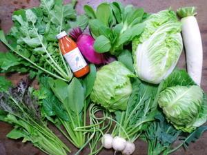 5月上旬の野菜セット -
