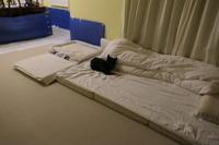 こぼれ防止に、おNewのベッド - HAMAsumi-Life