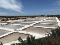 ポルトガルの塩田 - シークレットスペイン