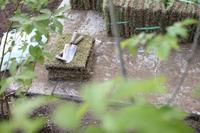 gardener芝を張る - 普  段  着