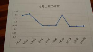 5月上旬の水位と水温 -