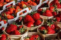 道の駅「八王子滝山」は野菜が豊富 - 家暮らしノート