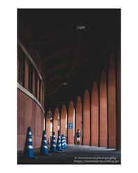 Ball Park - ♉ mototaurus photography