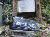 瀞峡・赤目四十八滝・室生寺・長谷寺(20190510~14) - よっこの旅日記