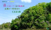 令和元年 (2) 藤を追って番外 牡丹編くるま旅 - 日本全国くるま旅