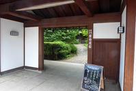 目白庭園のカルガモ親子 - 月の旅人~美月ココの徒然日記~