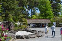 7000株の牡丹・・「須賀川の牡丹園」 - Nature World & Flyfishing