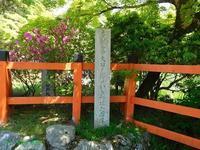 大田神社のかきつばた2019年5月11日 - LLC徒然