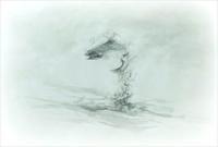 《五月皐月岩魚跳躍》 - 『ヤマセミの谿から・・・ある谷の記憶と追想』