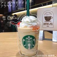 【スタバ新作】 - た ま き's Blog