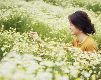 春の収穫祭 - 神戸布引ハーブ園 ハーブガイド ハーブ花ごよみ