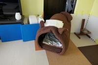 ジェンちゃんのおうちに玄関を作りました - HAMAsumi-Life
