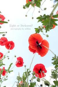 真下からの眺め - Light or Darkness?