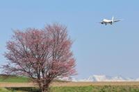 いっきにひらく~旭川空港~ - 自由な空と雲と気まぐれと ~from 旭川空港~