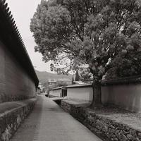 最後の11枚その9 - Life with Leica