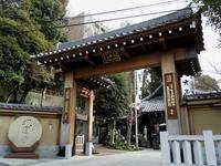 東京そぞろ歩き・2月の東京:大圓寺 - 日本庭園的生活