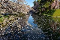 2019東北・北陸紀行~弘前公園⑥ - Photo Of 北海道大陸