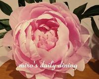 ピンクの芍薬 - miro's daily dining