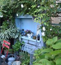 名残惜しいパンジー・ドゥ・アントワネット - 小さな庭 2