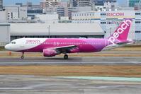 出張で福岡へ その8 ラウンジで撮影した飛行機(4) - 南の島の飛行機日記