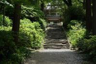 5.12 浄智寺 - 週末はソニーα6500でぶらり鎌倉・湘南散歩!