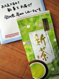 新茶の季節 - サモエド クローカのお気楽日記