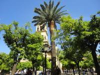 スペイン旅コルドバ - 健康で輝いて楽しくⅡ