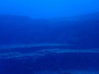 5月18日今日も大漁 - YDSブログ