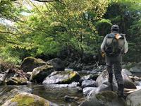 2019.05.16 奥美濃釣行 山紫水明さんと行く。 - 気ままなFly Fishing