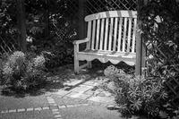 英国庭園でくつろぐ透明人間 - Silver Oblivion
