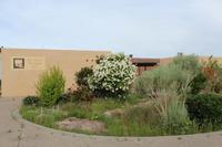 New Mexico Art League - 南加フォト