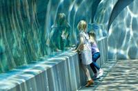 水に包まれた世界 - ナナイロノート