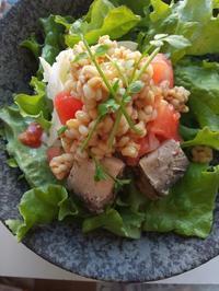 もち麦サラダの朝ごはん - 料理研究家ブログ行長万里  日本全国 美味しい話