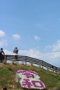 Sun 3  Sunday・5月 - 猪こっと猛進