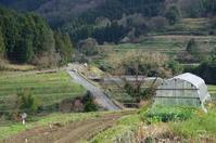 明日香村稲渕 - ぶらり記録:2 奈良・大阪・・・