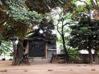 お寺さんから谷中銀座へ - 猫多摩散歩日記 2